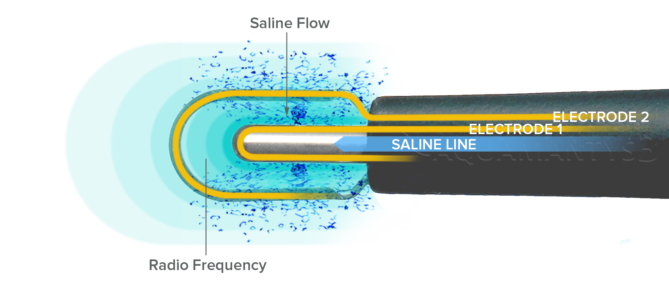 Salient_Tech.png