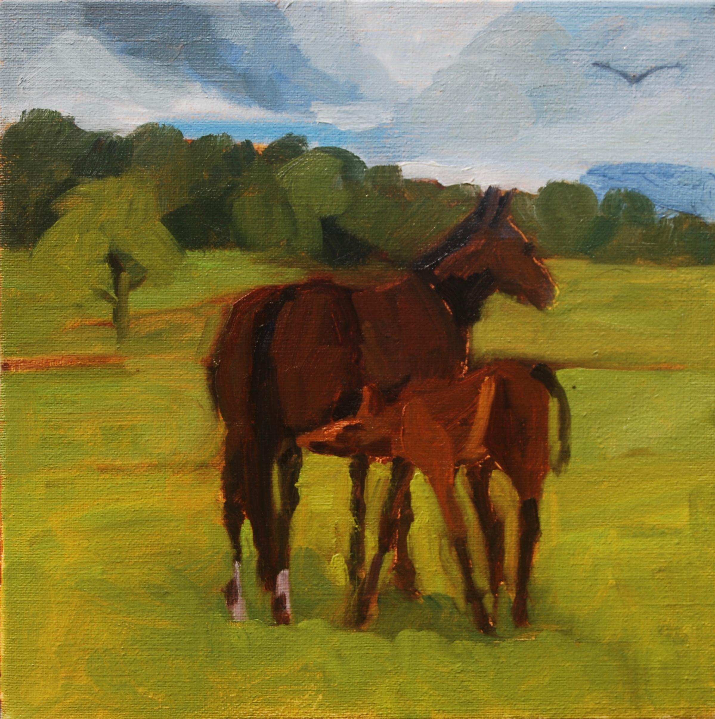 Morgan Mare & Foal