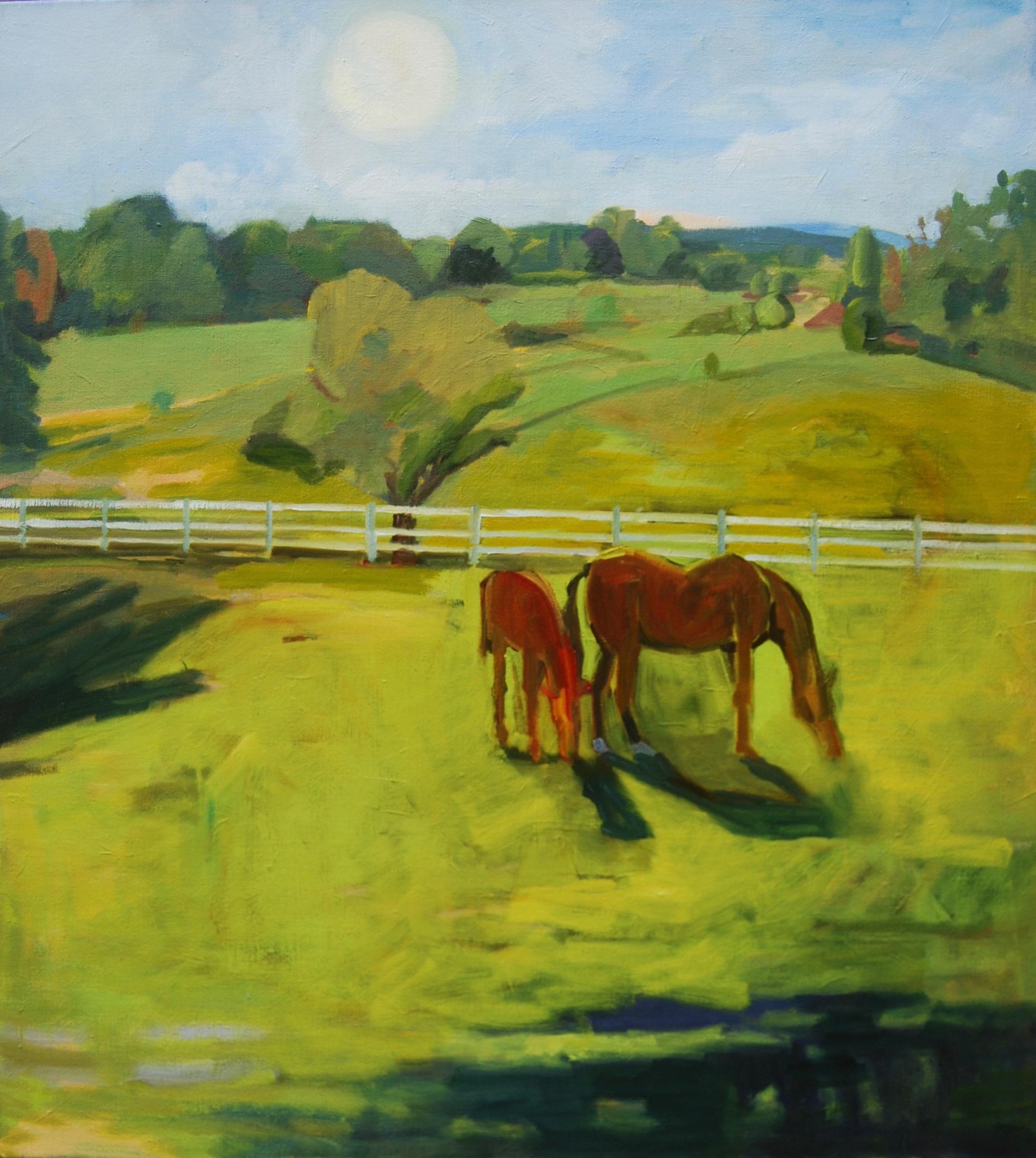 Weybridge Morgan Horse Farm