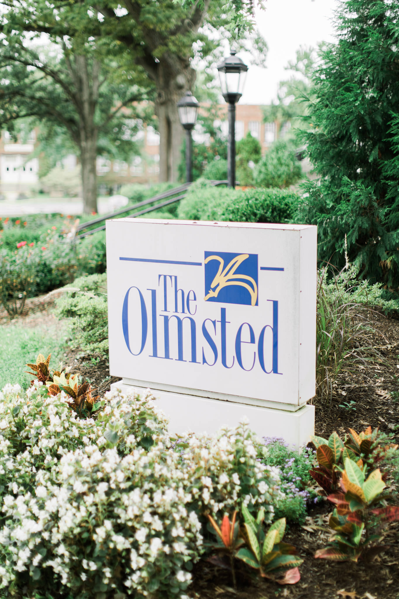 The Olmsted Wedding Photography for Blog-8.jpg