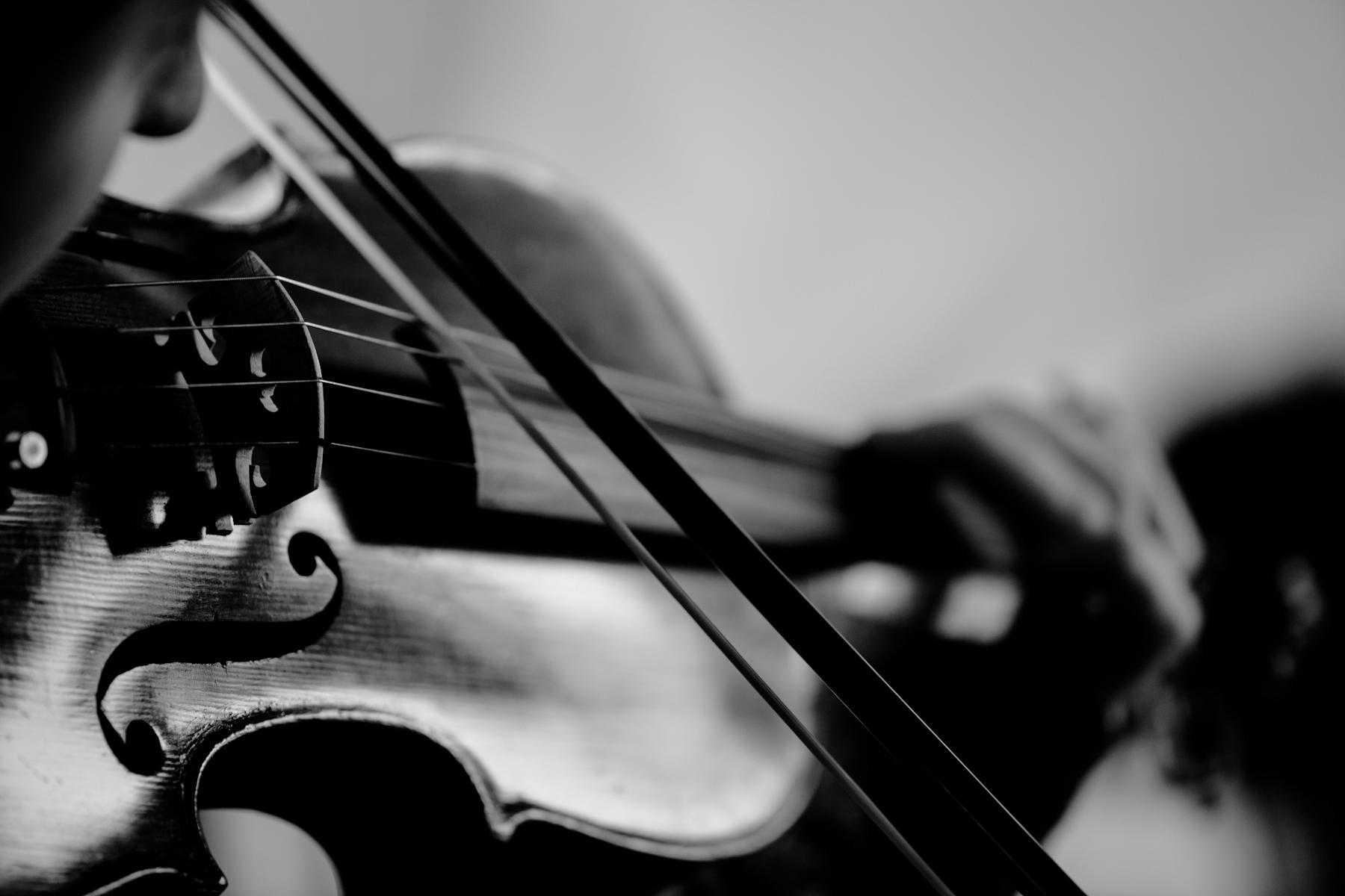 We were so lucky to get Portland violin virtuoso Annemarie Hoffman in the studio. Her emotional string swells had everyone in the engineering room in tears!