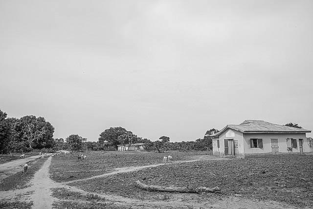 The road to Rural Mashegu