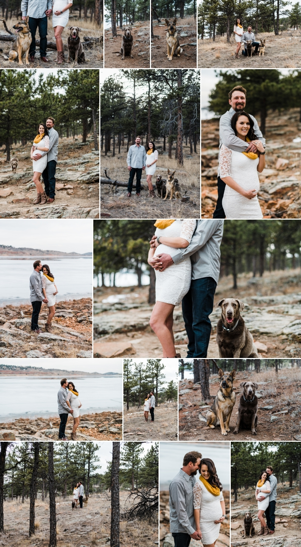 Fort Collins Pet Photographer