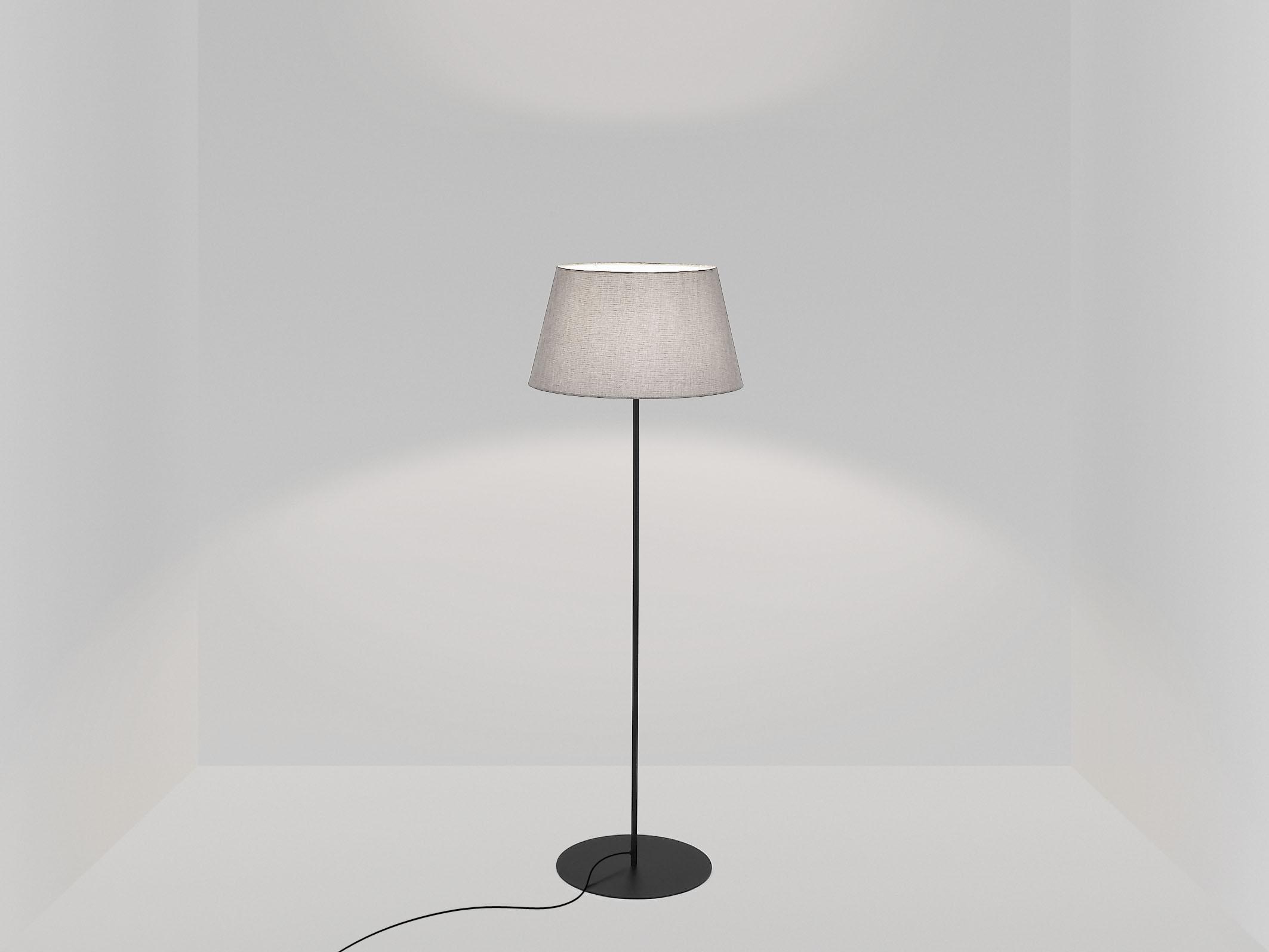 pegasus_floor_lamp_black_base_titanium.jpg