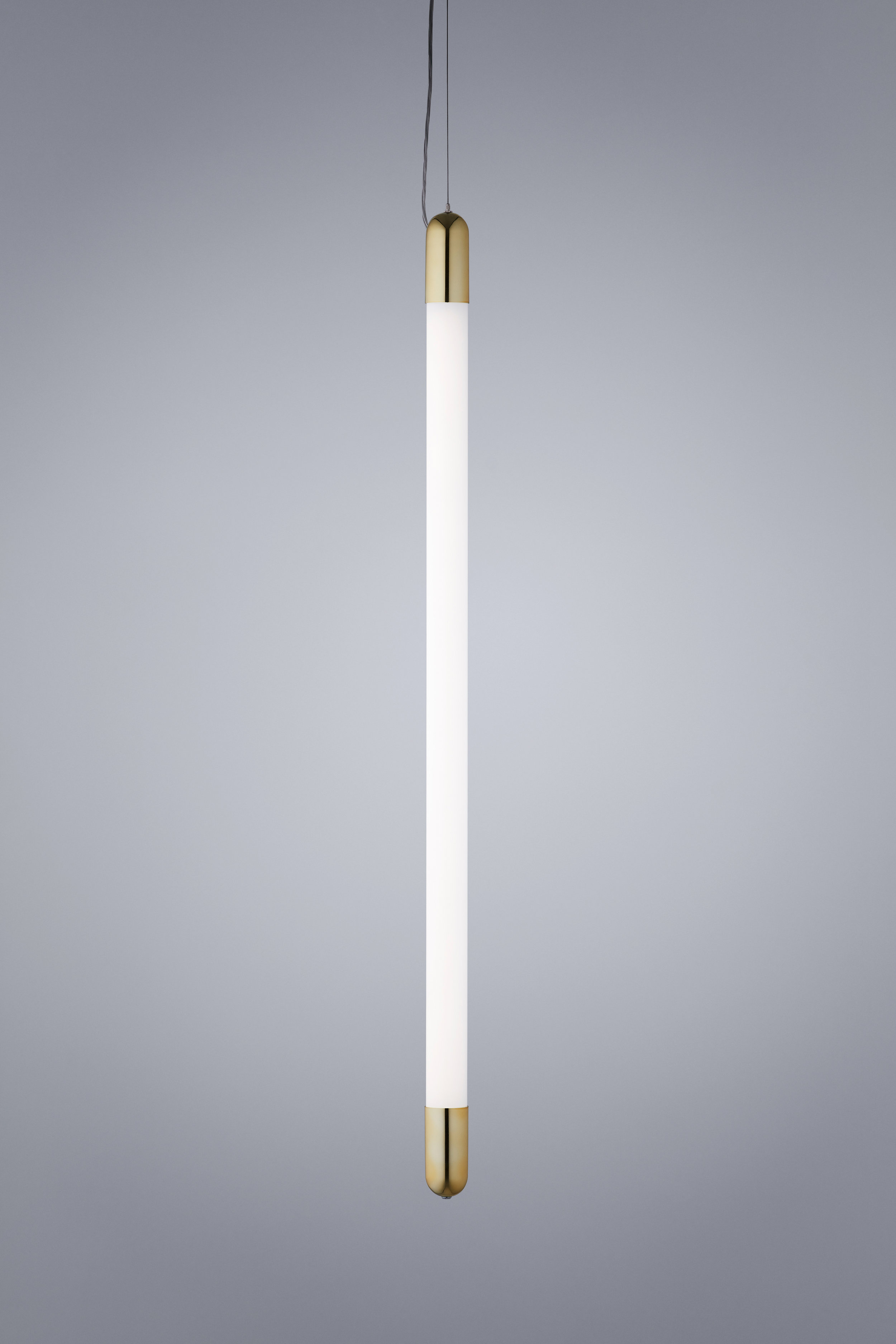 ISM Objects_Snag vertical long bright brass_Pendant.jpg