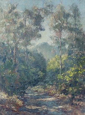 Mt Tamalpais from the Eucalyptus trail