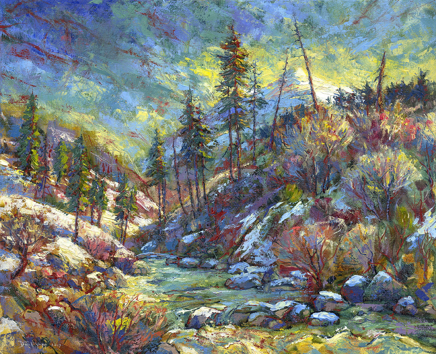Colors of Winter—South Fork of the American River