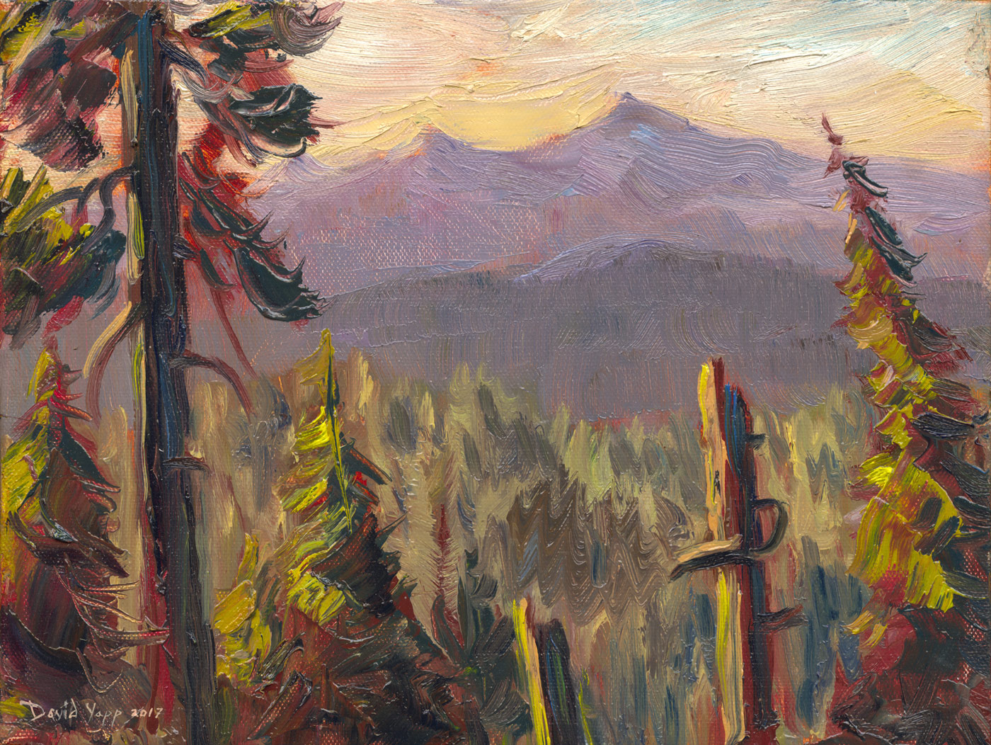 Primordial Forest Landscape