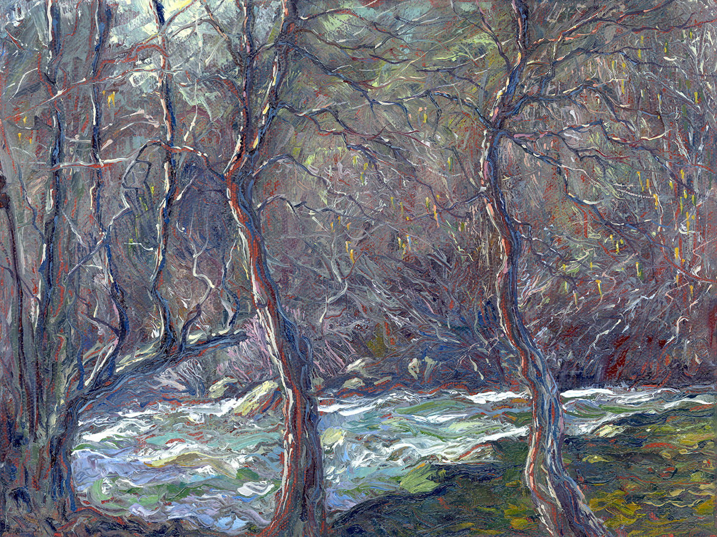 White Alders on the Consumnes River