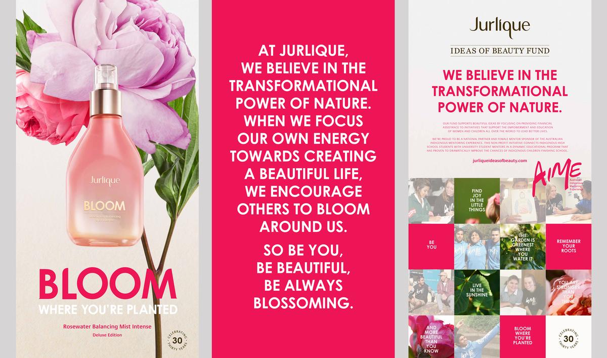 bloom-lightboxes.jpg