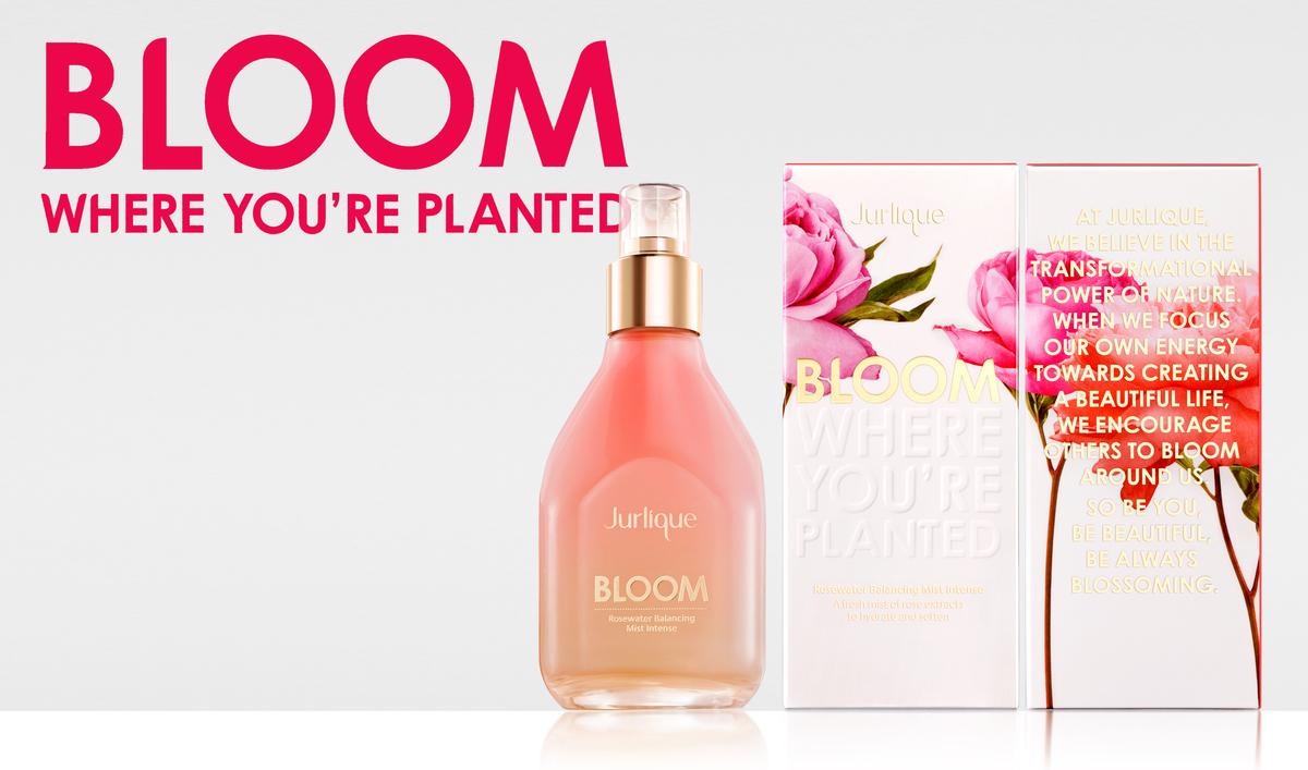 bloom-cartons.jpg