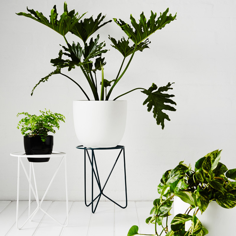 The Butterfly  - The Butterfly is suited to a wide range of pot shapes and sizes. Larger pots and drip trays can sit flat on the wide surface area whilst smaller pots can sit within the triangular support.