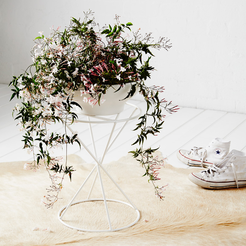 The Hourglass  - The Hourglass is suited to a wide range of pot shapes and sizes. Larger pots and drip trays can sit flat on the wide surface area whilst smaller pots can sit within the triangular support.