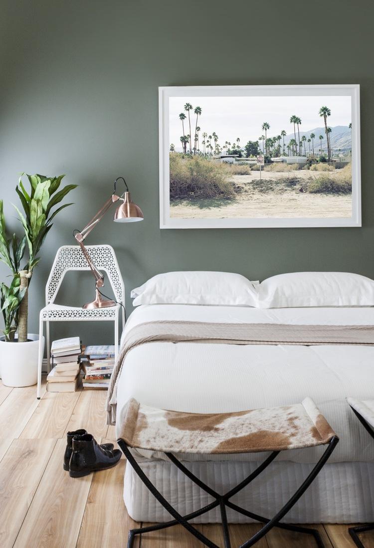 Palms Landscape
