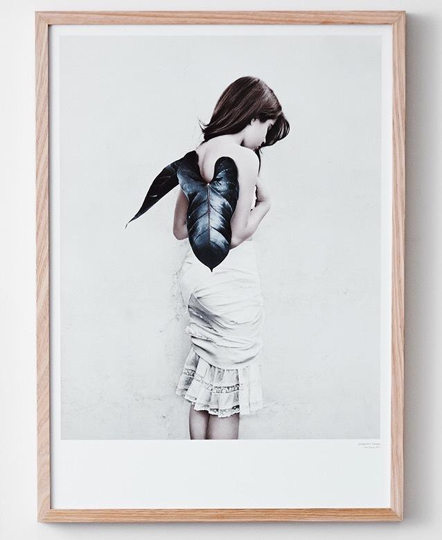 Norsu Interiors -  Vee Speers Poster $49.00