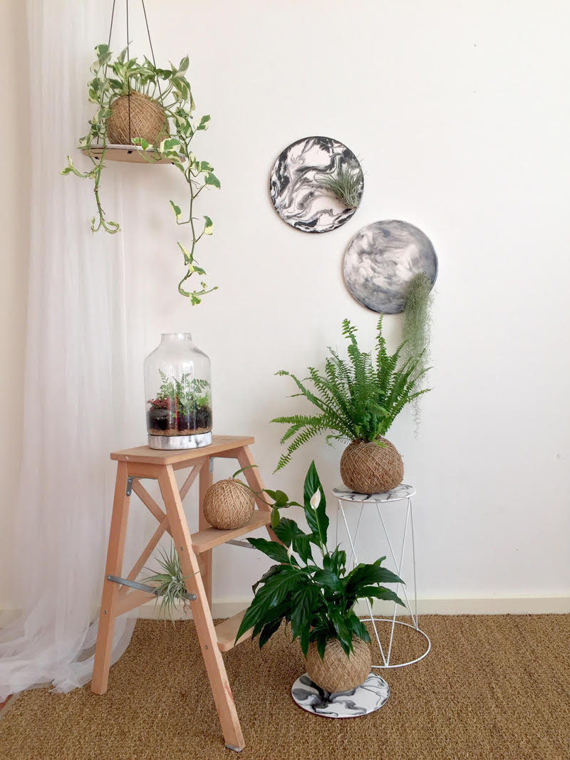 -           Airplant resin wall art RRP $140 (incl. airplant)   -           Hanging resin art kokedama platform RRP $200 (incl. kokedama)   -           Terrarium with hand-painted resin art base RRP $185   -           Kokedama resin art tray RRP $85 (incl. kokedama)