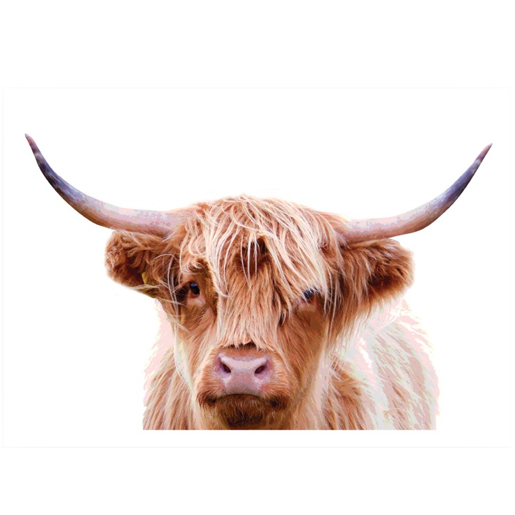 Temple & Webster - Highland Cow 3 Printed Wall Art
