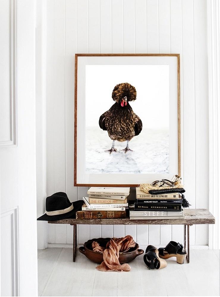 Kara Rosenlund - Chicken Photographic Print
