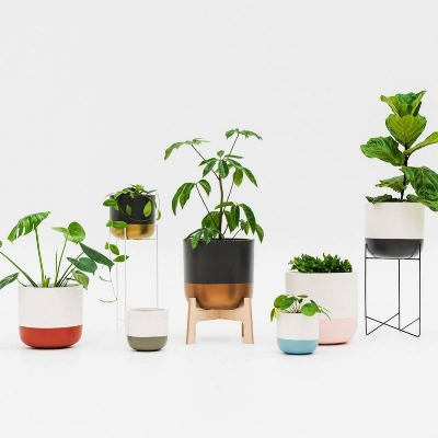 TOAST & HONEY STUDIO   - DIPPED POT PETITE $70