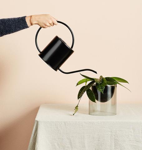 IVY MUSE -    Lumen Vase