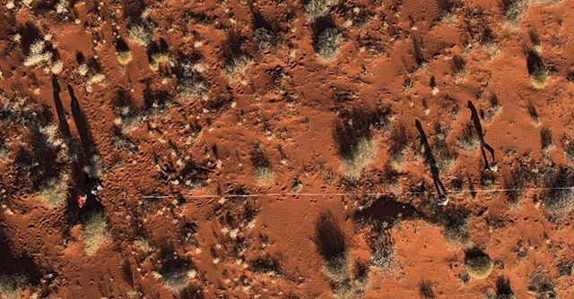 """Study the science of art. Study the art of science. Develop your senses- especially learn how to see. Realise that everything is connected to everything else."" . . . #ProjectOZscav #science #scicomm #edchat #education #filmmaking #discover #outdoors #australia #desert #stories #landscape #dji . @bushheritageaus"