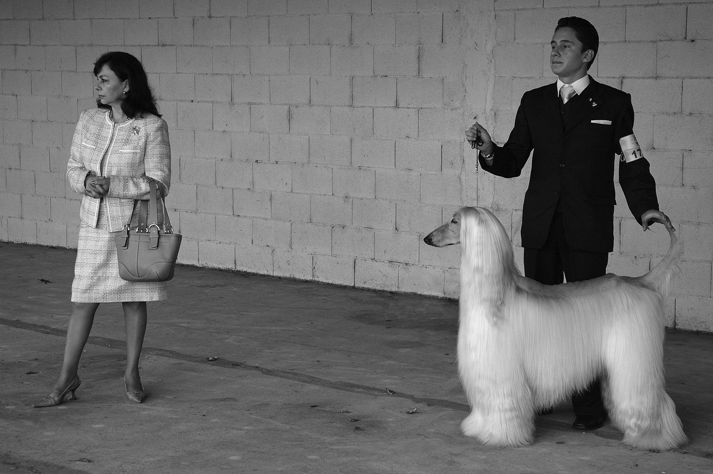 Dog show, Buenos Aires, 2005.