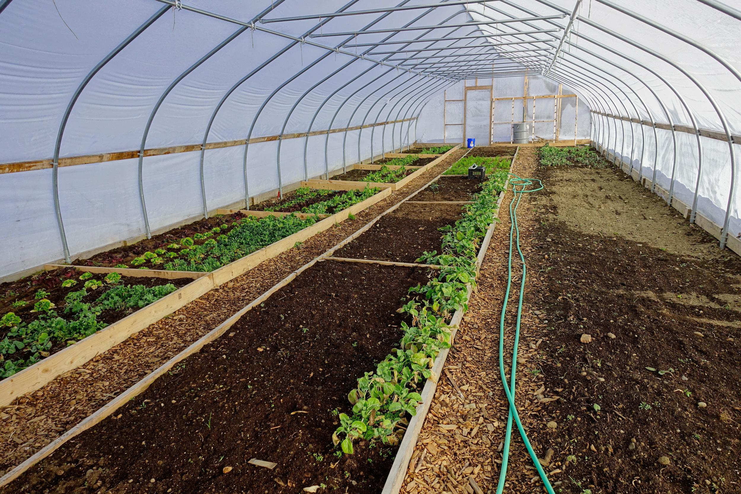 Farm&Garden-51.jpg