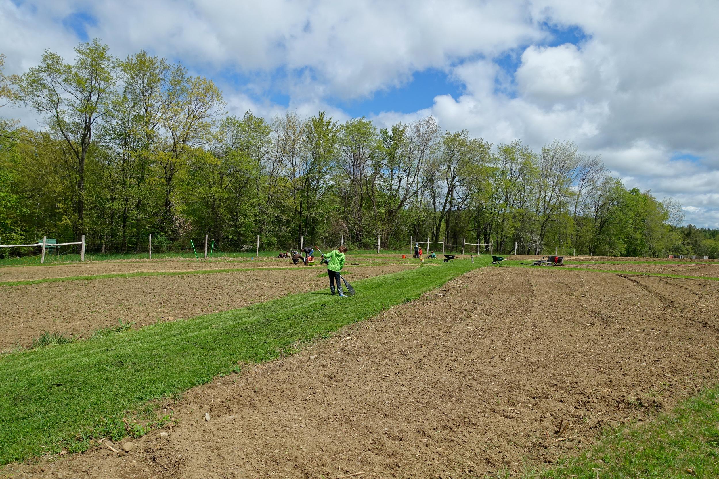 Farm&Garden-56.jpg