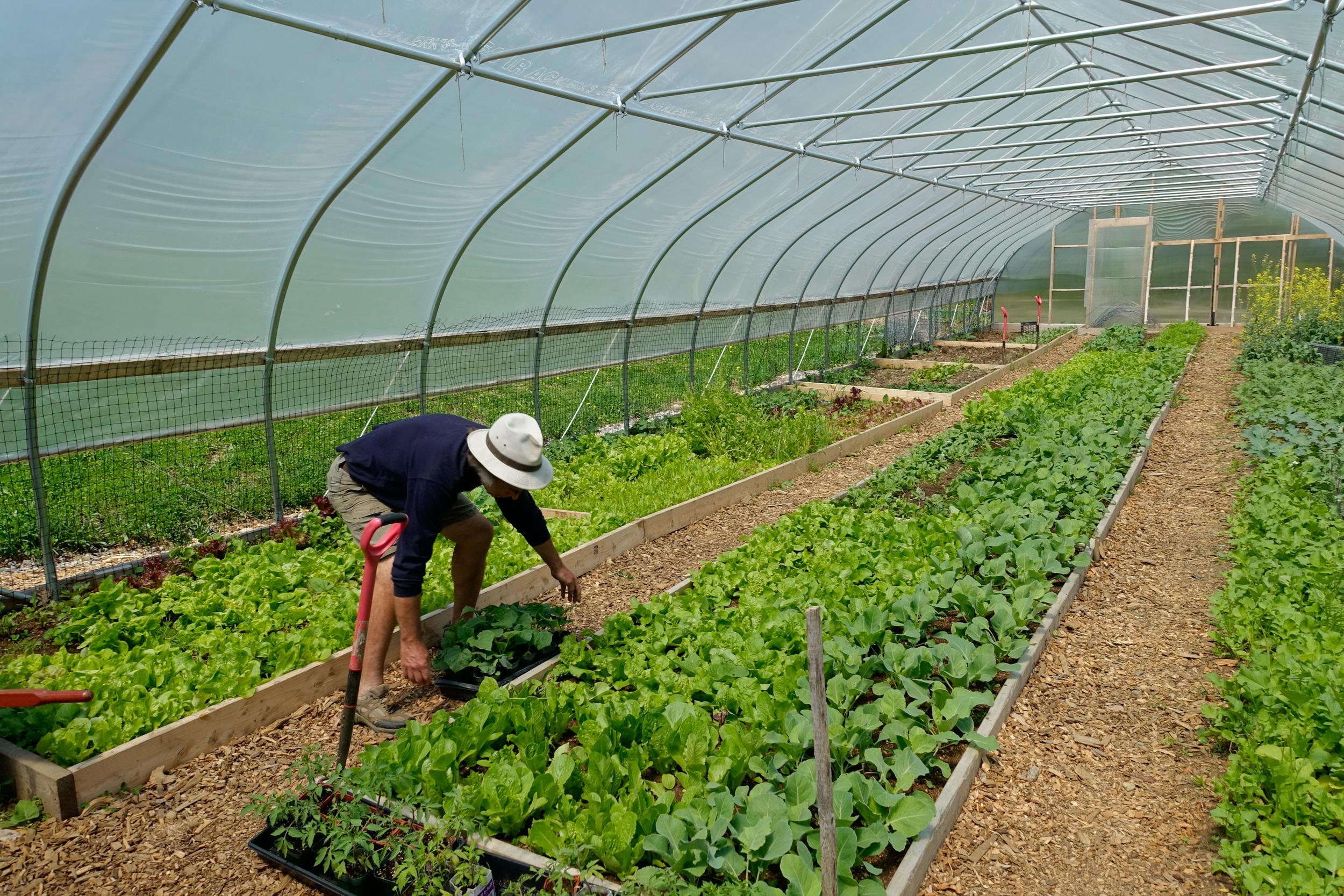 Farm&Garden-57.jpg
