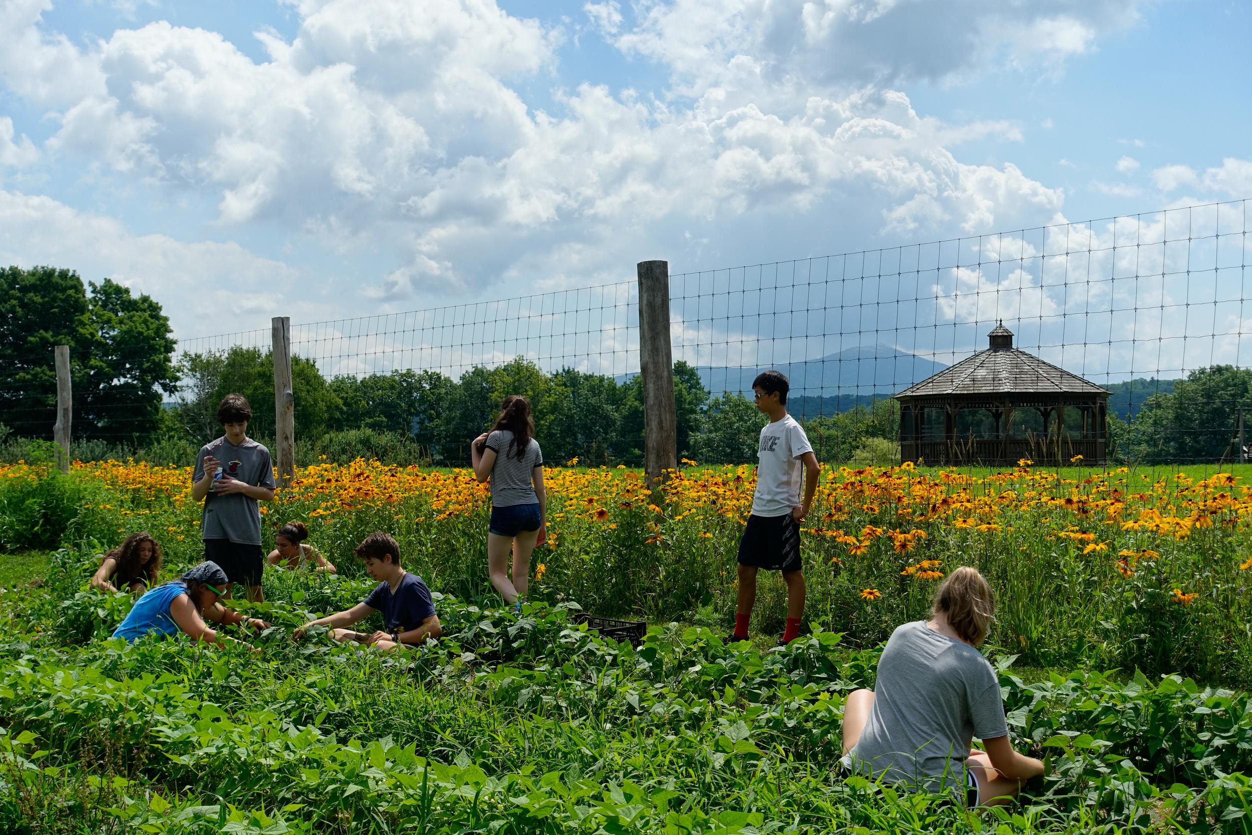 Farm&Garden-62.jpg