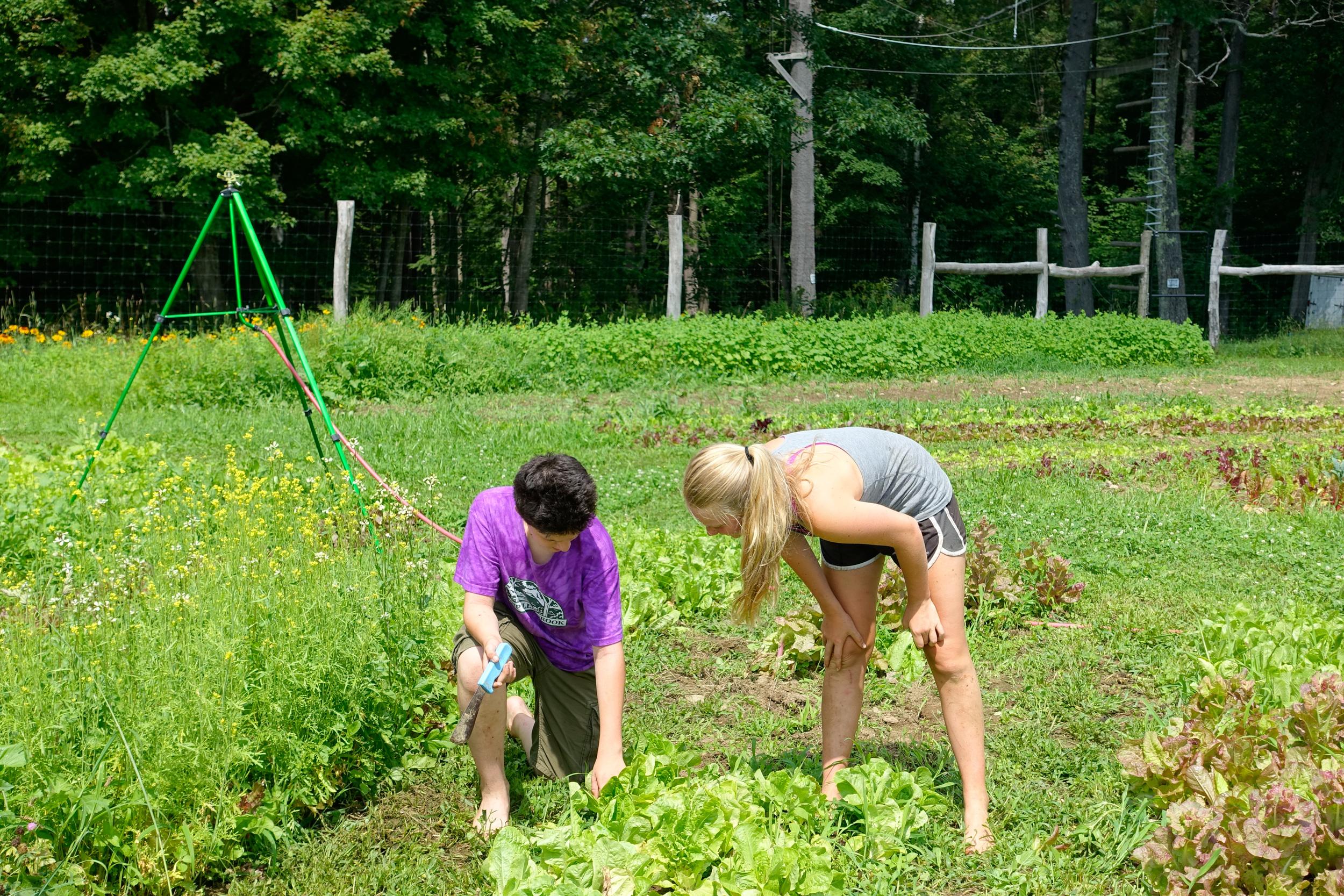 Farm&Garden-63.jpg
