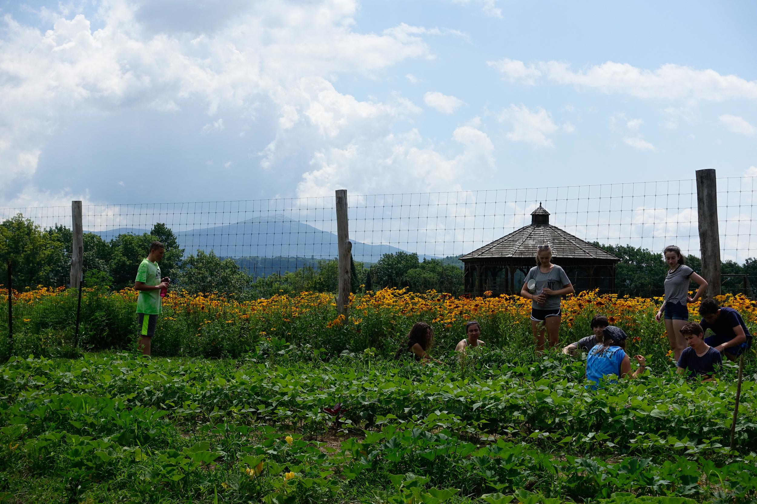 Farm&Garden-64.jpg