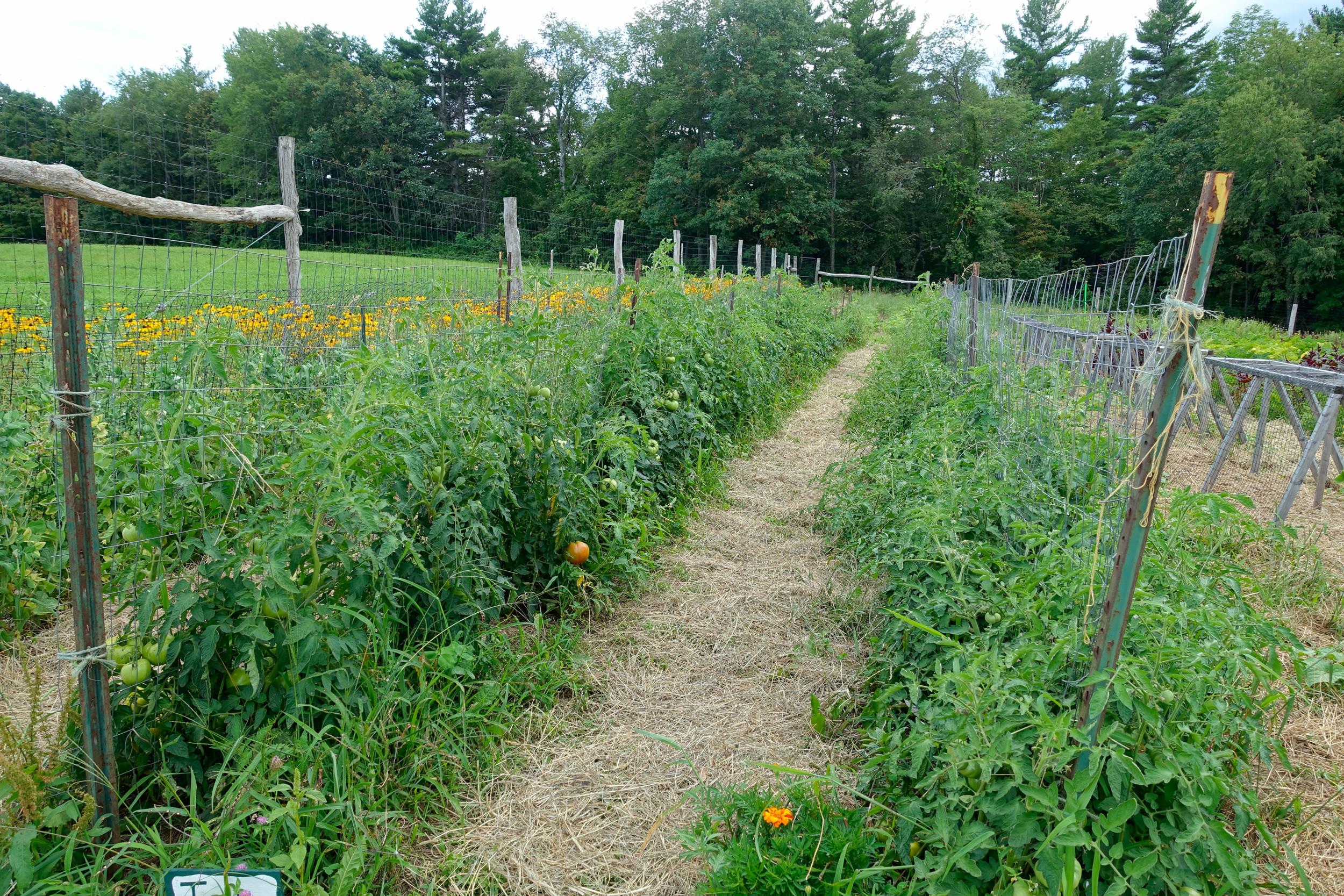 Farm&Garden-68.jpg