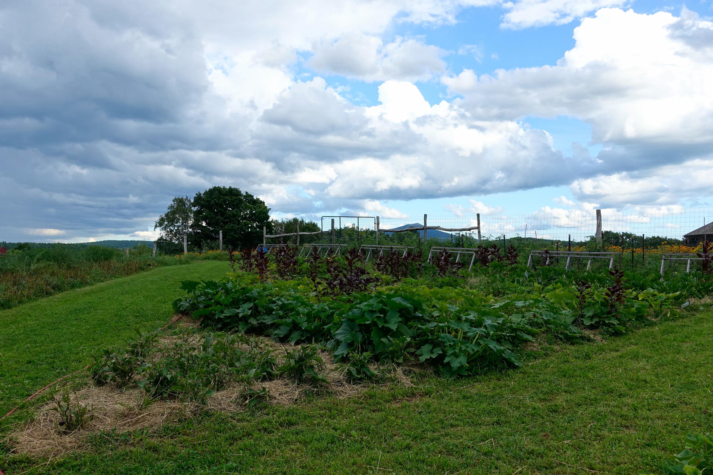 Farm&Garden-70.jpg