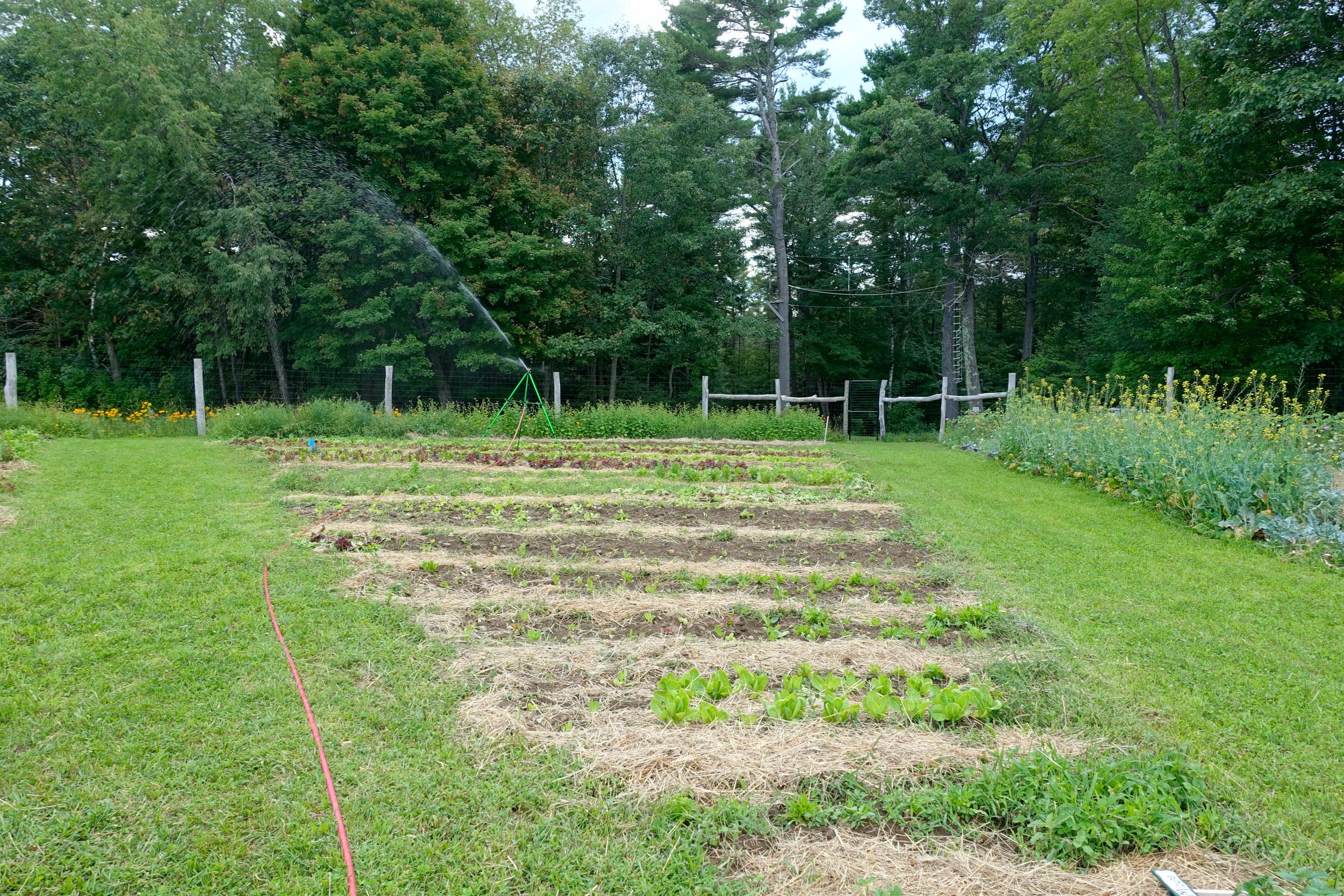 Farm&Garden-69.jpg