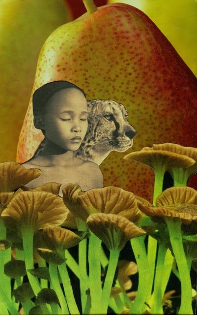 Soul Collage 1.jpg