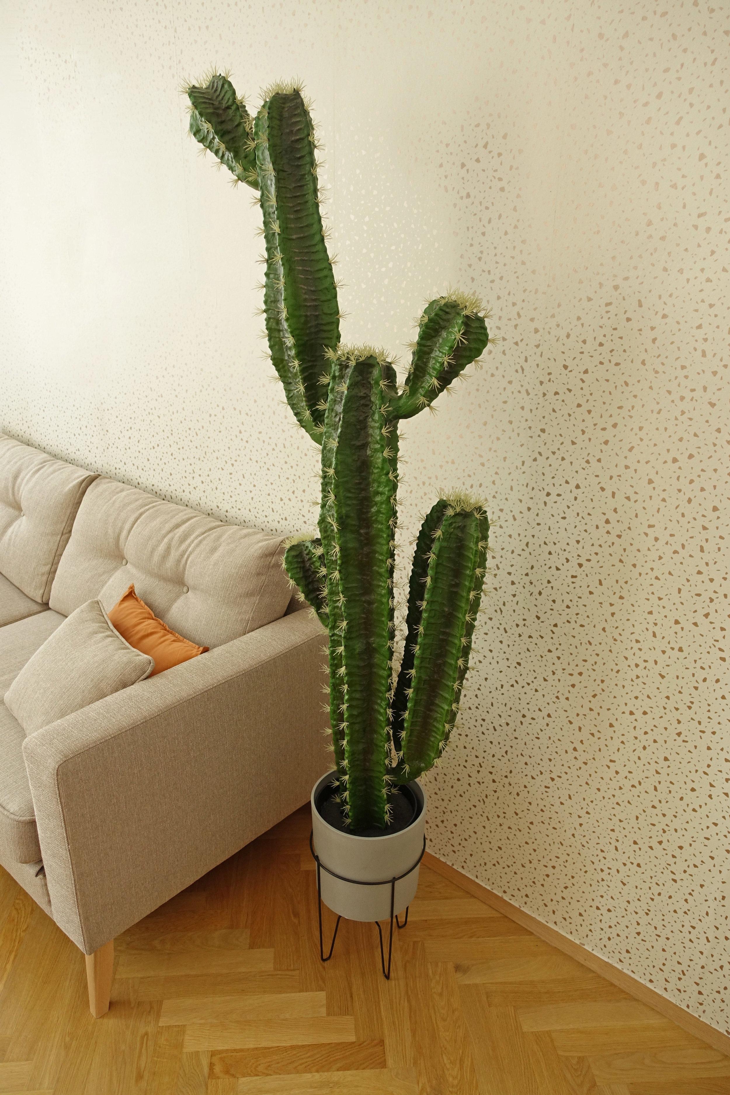 05_Apartment_gr.jpg