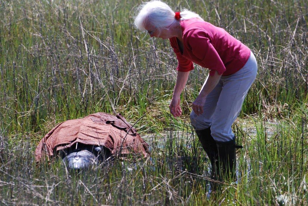 Lynda Fox helping keep the Leatherback cool