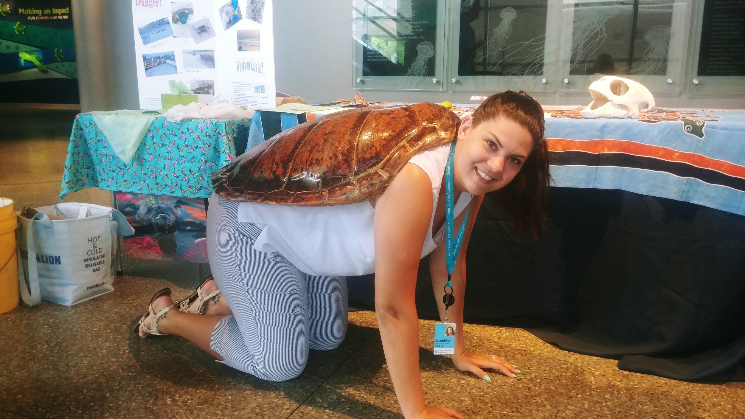 World Turtle Day 4 5-18.jpg