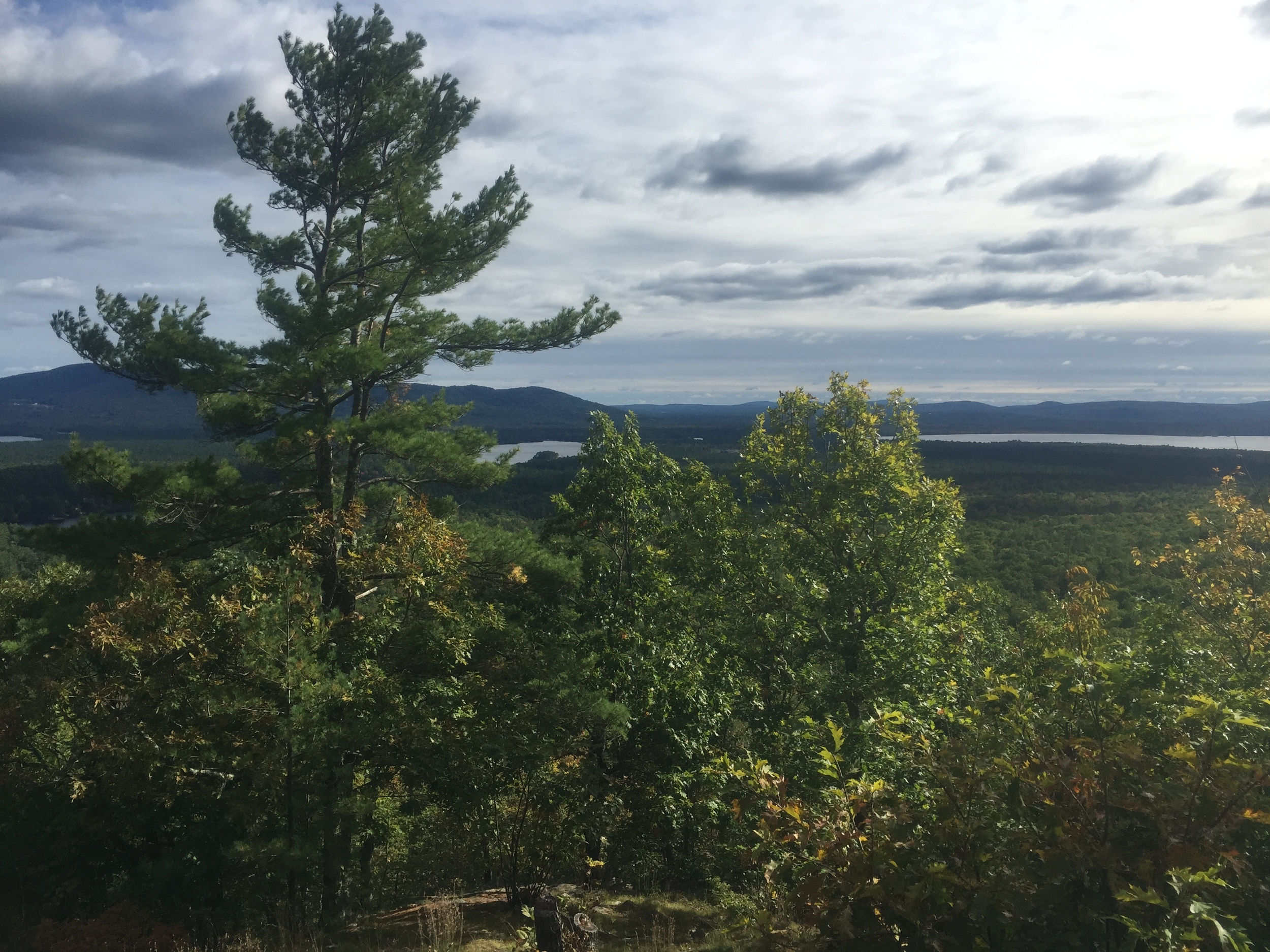 view-from-marys-mountain.jpg