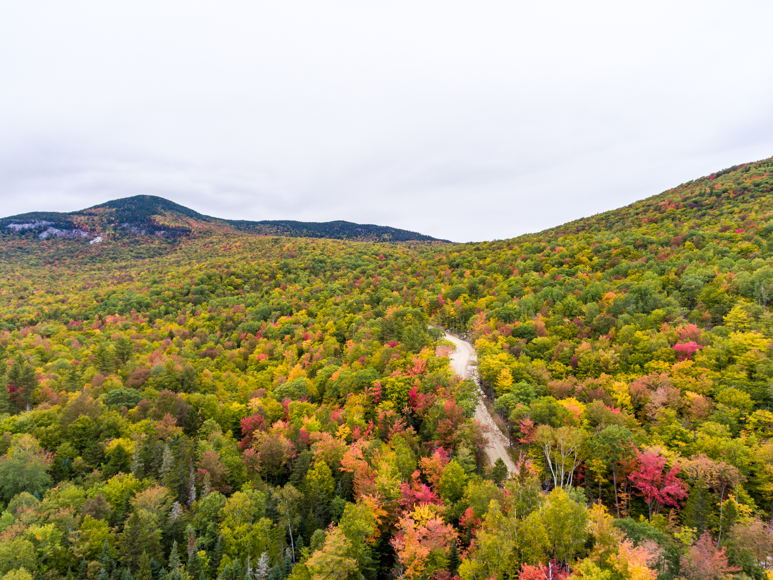 Foliage in Maine - October 1, 2016