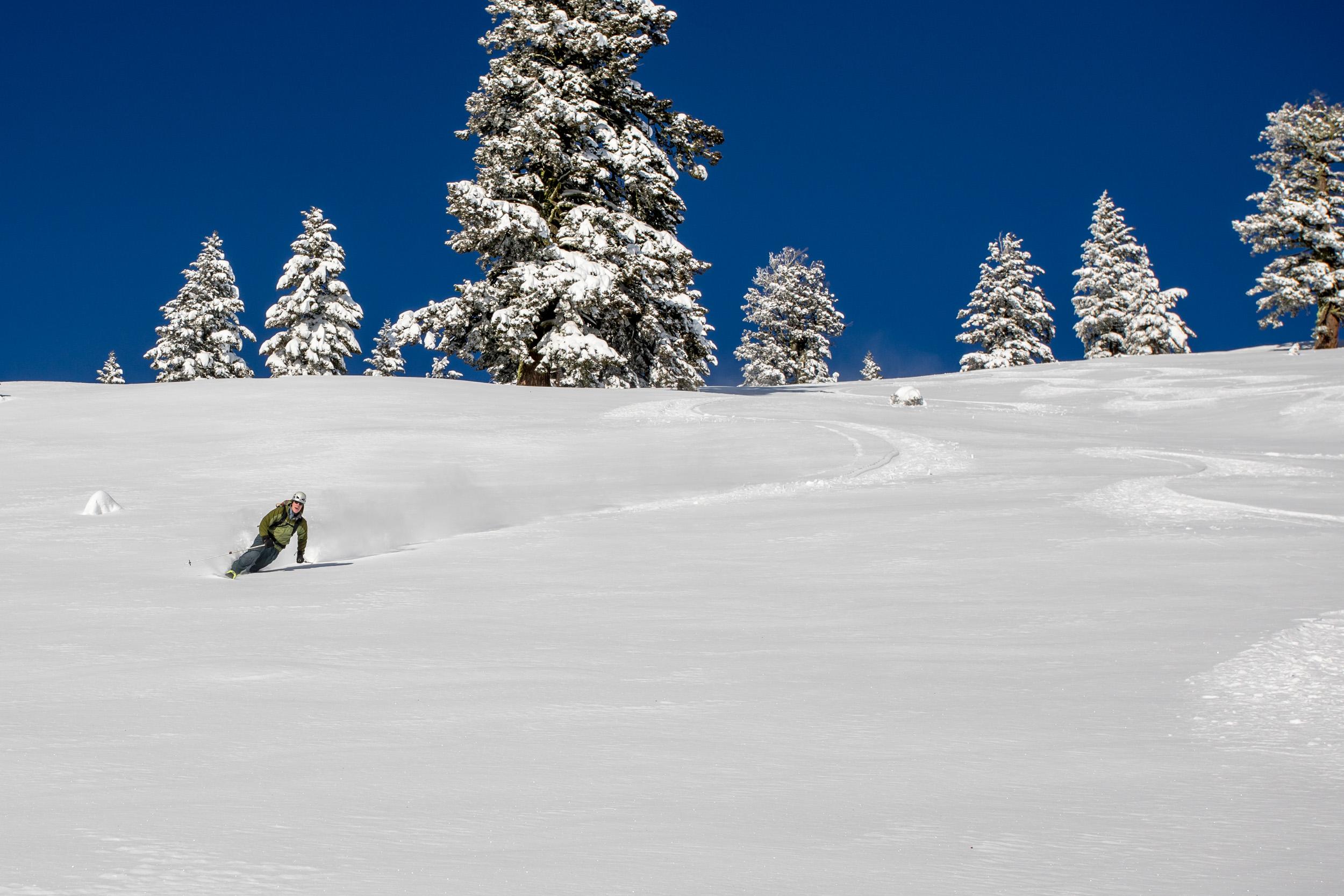 jim crowley tele skier.jpg