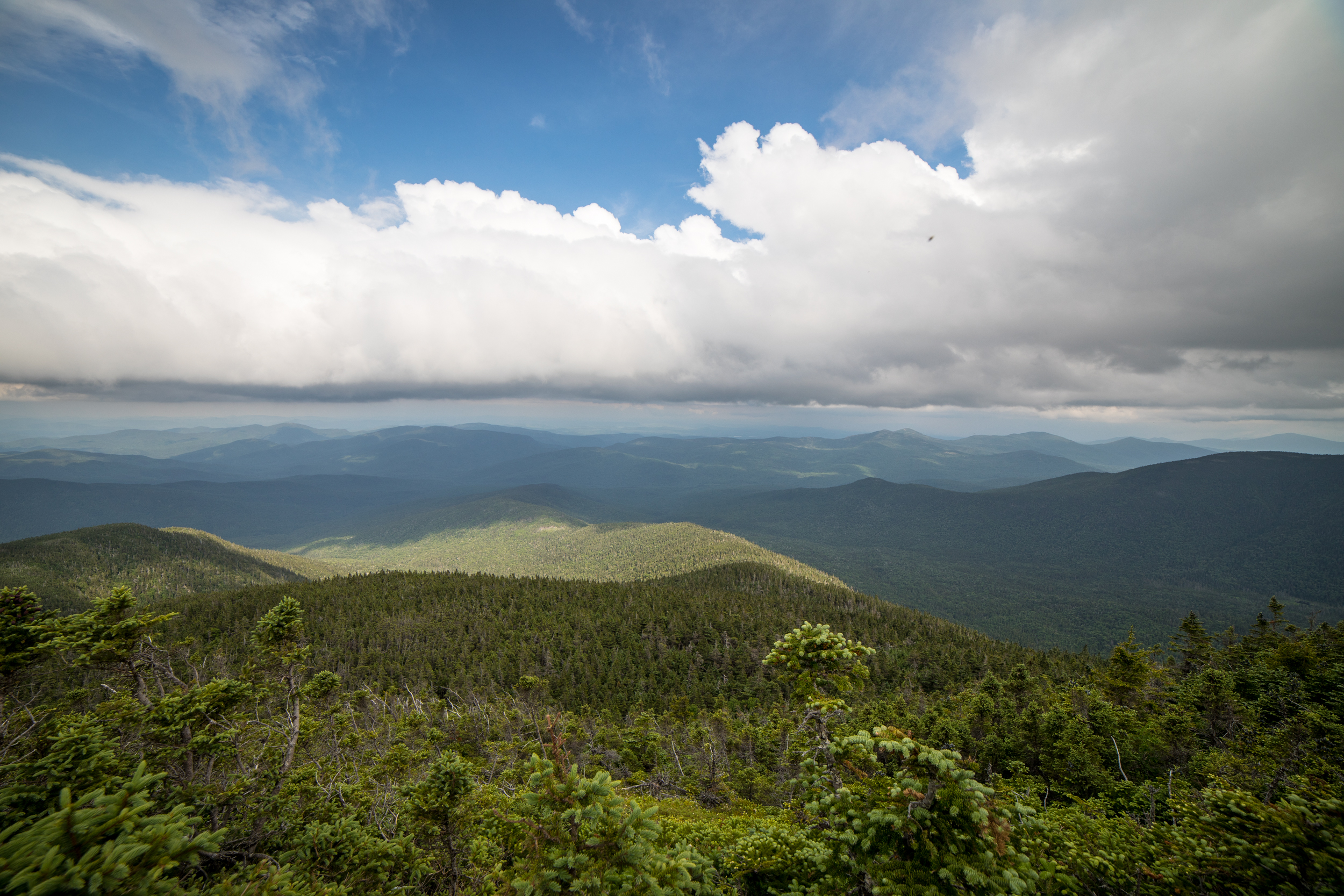 Middle Carter Summit View.jpg