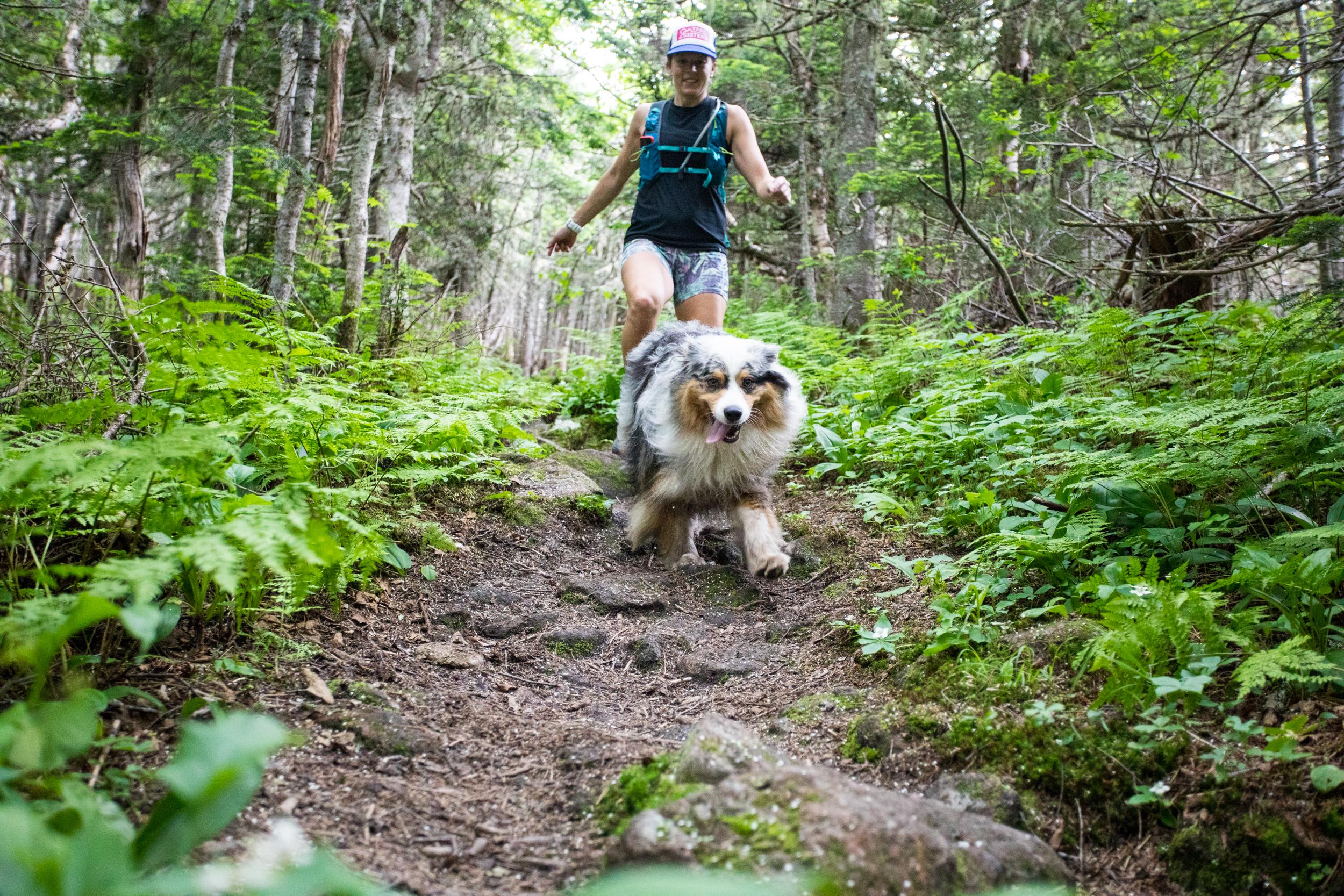Carter Range Trail White Mountains Runners.jpg