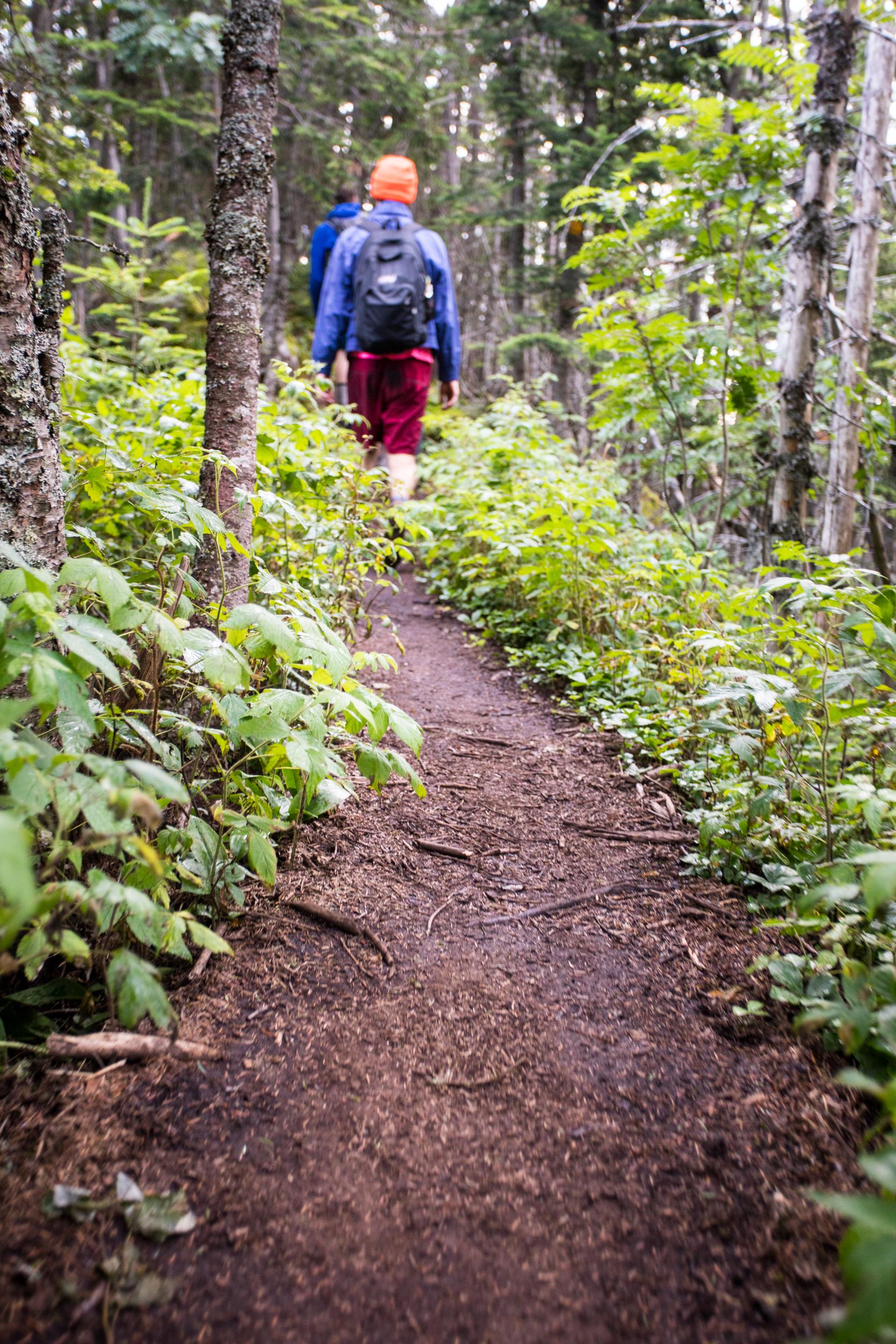 Mount Dix Trail Smooth.jpg