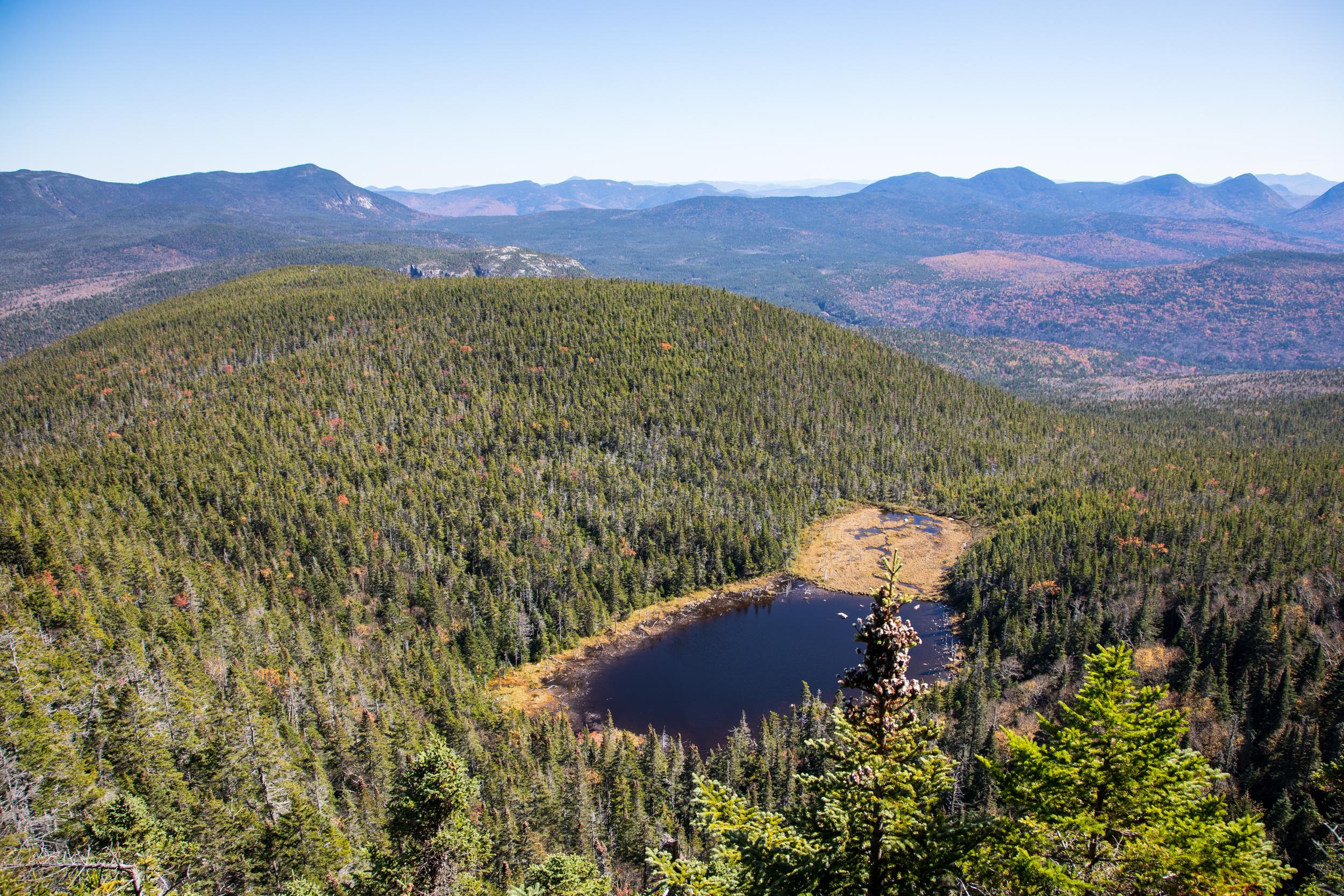 Zeacliff Pond NH.jpg