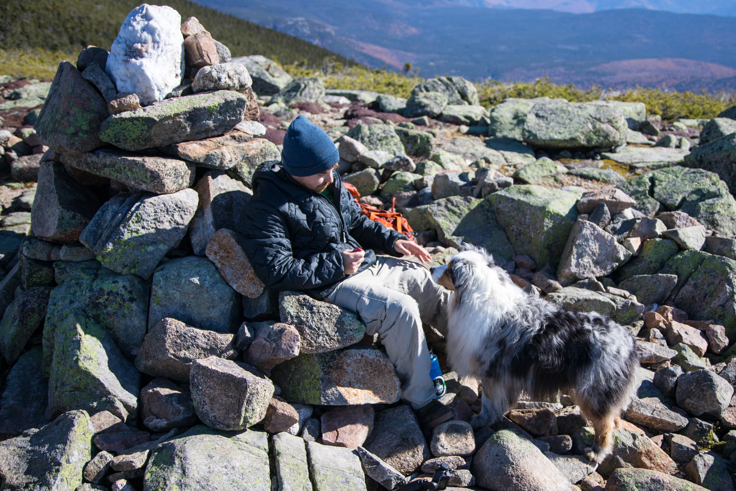 Guyot Summit NH.jpg