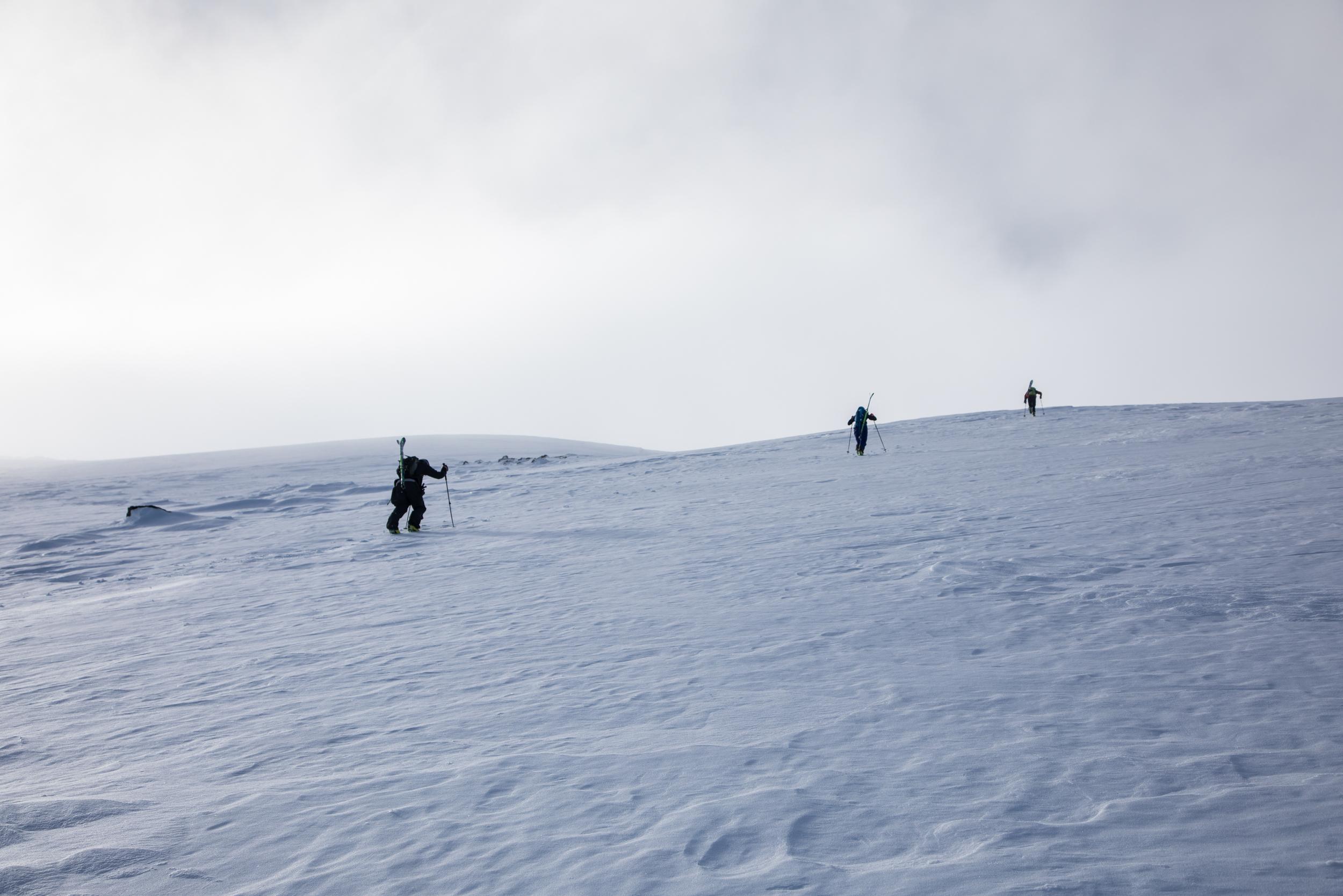 Mount Washington Snowfields.jpg