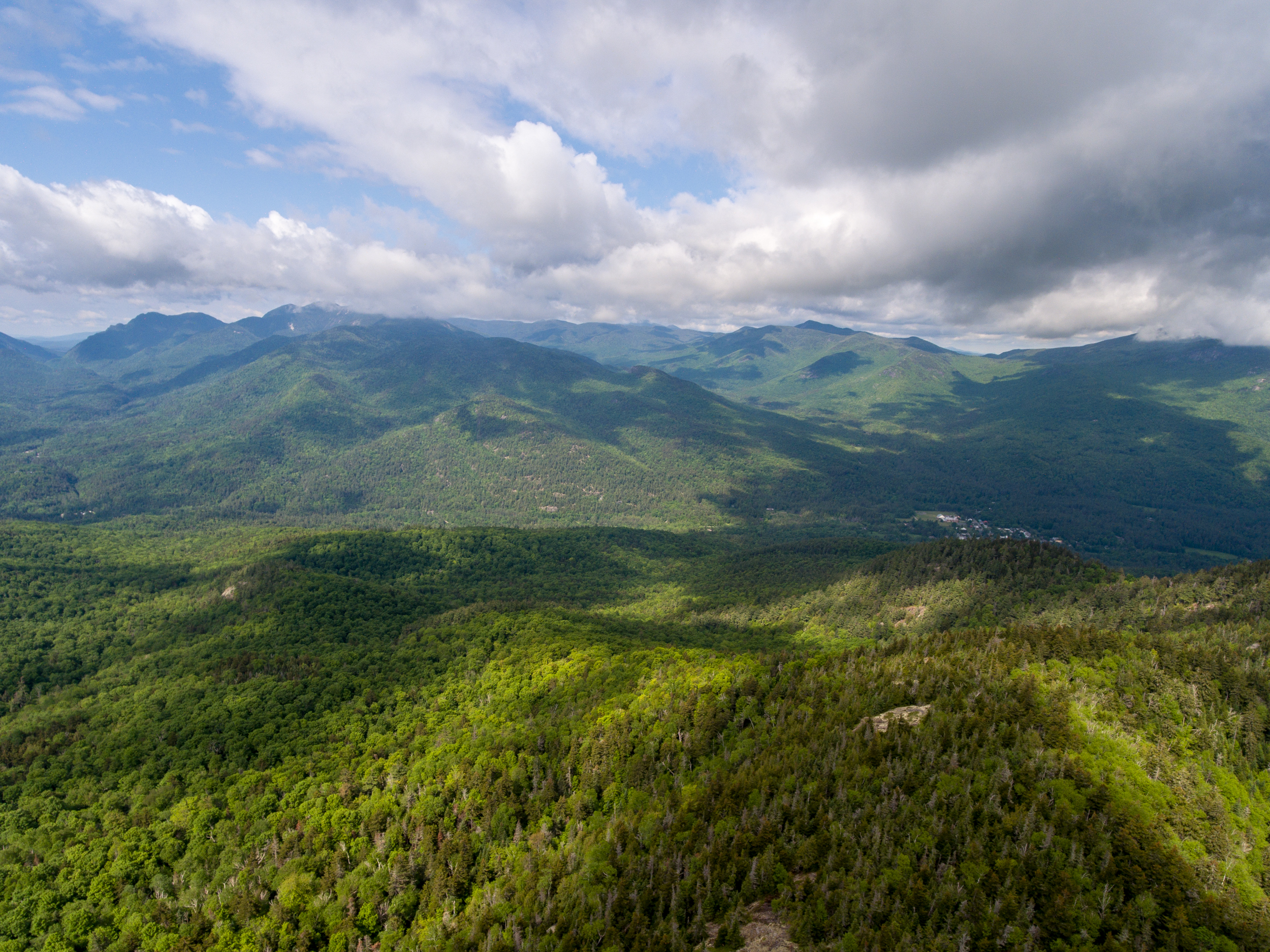 View of the Adirondacks from Hopkins Mountain.