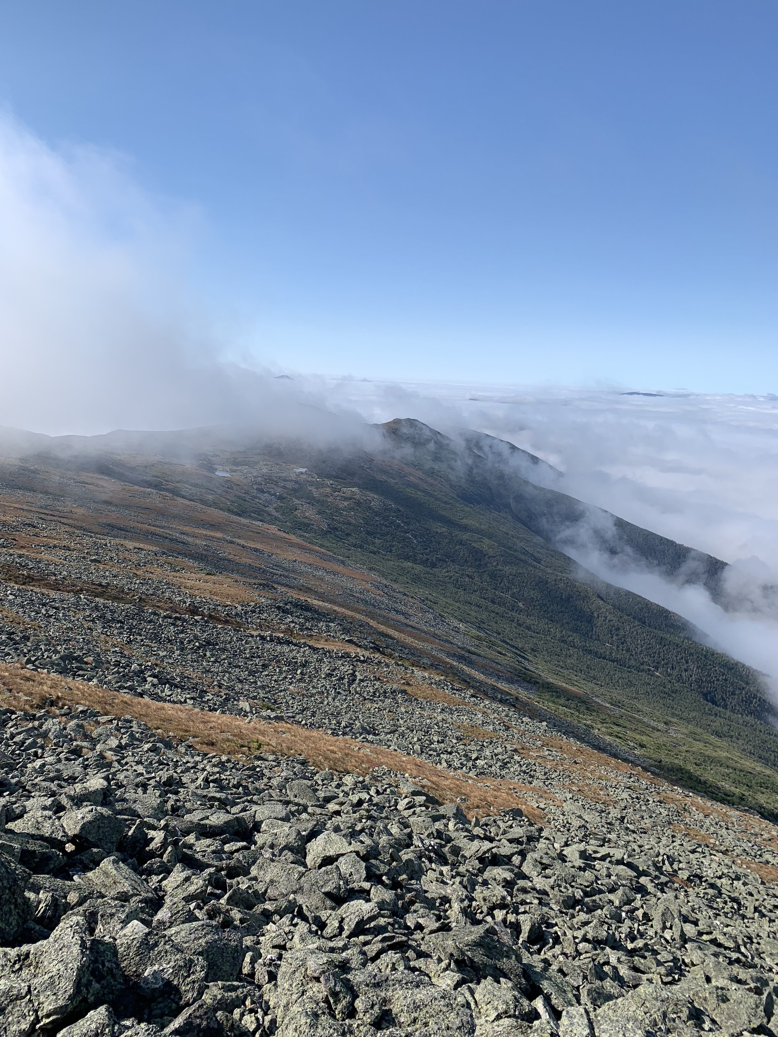 Southern Presidentials.
